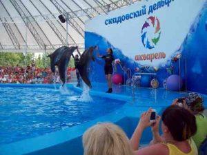 Поездки в Скадовск