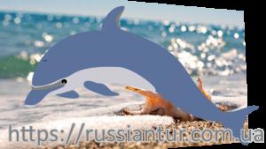 Федотова коса Кирилловка  базы отдыха